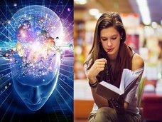 """読書で脳が""""物理的に激変する""""ことが科学で判明! 大人でも有効、別人へと変身できる可能性(最新研究)"""