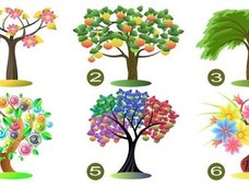 【性格診断心理テスト】6つの木の絵から1つを選択するだけで、あなたの本当の性格と能力が判明する!