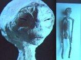 ナスカで発掘された「3本指の宇宙人ミイラ」が人類よりも爬虫類に近いことが濃厚! 古代人と共生していたレプティリアンの可能性