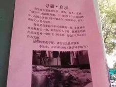 """ペット捜索に懸賞金5,000万円超! 中国で新たな""""誘拐ビジネス""""が爆誕!?"""