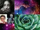 """行方不明者に共通する「異常に不可解」な事実、植物が緑色の衝撃理由…人気オカルトブログ「In Deep」管理人が""""ベスト5記事""""を選出!"""