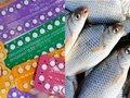 【悲報】避妊ピルで世界中の魚がトランスジェンダー化! 英オス魚の20%が卵子を保有、日本や米国もヤバイ事態に