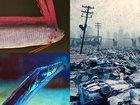 【徹底反論】東海大発表「深海魚の出現は地震発生と無関係」は重大なミスを犯している!? 海洋生物と地震のつながりは確かにある!!