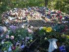 【閲覧注意】ゴミとして捨てられた完璧な腐敗ミイラ! 非日常的すぎる異様な光景とは?=ブラジル