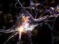 """【衝撃】人間のように推論・学習・忘却できる""""生物に近い""""AI誕生へ! 脳と人工知能の差をなくす「量子物質」が超ヤバい(最新研究)"""