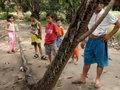 【閲覧注意】8mの超巨大ニシキヘビと死闘を繰り広げた警備員の姿が痛々しすぎる! 肉がえぐられ、骨が露出も、地元民はヘビのフライを楽しむ=インドネシア