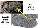 【やはり】恐竜と人類が共存していた決定的証拠5選! 人類史を覆すヤバすぎる古代遺物まとめ