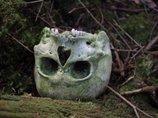 腐りかけでハエだらけの死体にドロドロに溶けた死体……樹海で出会った死体たちを解説!