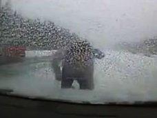 【閲覧注意】冬の高速道路で下車したら…トンでもない悲劇が! 信じられないほど不運な男の末路とは?=ロシア