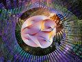 10次元までの世界を段階的に徹底解説! 6次元で全宇宙にアクセス、7次元でもう1つの宇宙へ…高次元世界のすべて!