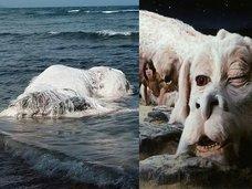 「ネバー・エンディング・ストーリー」のファルコンの死骸が打ち上げられる! 全身を白い毛で覆われた謎生物に地元民困惑=フィリピン