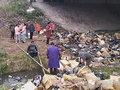 中国でトラックが車両火災 近隣住民がアディダス新作シューズ5,000万円分を集団略奪!