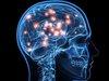 【ガチ】脳に情報を直接注入する方法が発見される! サルでの実験は成功(最新研究)=米