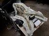 LAの地下鉄工事中に謎の「氷河期を生きた古代生物たち」が次々と発掘される! ウサギの顎やマストドンの前足も…!?