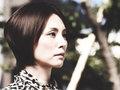 米倉涼子と松嶋菜々子は仲が悪い? 共演NGや不仲説が囁かれる女性芸能人8人!