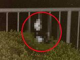 【独占・宇宙人動画】体長50cmの「刀をもったエイリアン」が町田に出現! ウインクする瞬間を激写! 専門家「これは歴史的大事件」