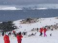 """南極が危ない! 中国初の商用旅客機着陸で懸念される観光客""""爆流入""""と""""自然破壊"""""""