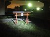 愛知県の「鳥居だけが出没する道路」!  心霊か、社か…不思議な高架下道路を調査した結果