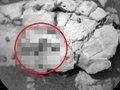 【全世界騒然】NASAが火星の「クネクネ芋虫」画像をTwitterに掲載、本気で調査へ! 生物学者もガチ興奮「生命の痕跡の可能性大」