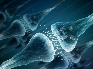 """【衝撃】脳の記憶能力や認知機能は""""ウイルス由来""""だった! 謎のタンパク質「Arc」の正体に戦慄(最新研究)"""