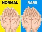 """左右の""""手相の位置""""で人生がわかる「両手占い」が当たり過ぎる! 両手の""""感情線""""がぴったり合う人はトラブルだらけの人生!?"""