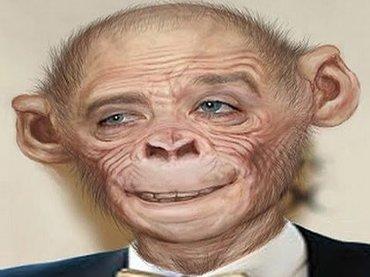 【衝撃】人間とチンパンジーのハイブリッド「ヒューマンジー」の実在が暴露される! 高名学者「研究所はパニックに…」