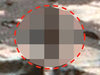火星でヒューマノイド2体をNASAが激撮! 多数のドア、豚、白い液体…
