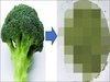 【衝撃】ブロッコリーの潜在能力を最大に活かす食べ方が判明! 老化防止、がん予防の健康効果は倍増!