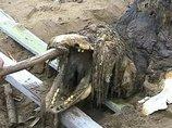 ロシア政府が秘匿する「サハリンモンスター」の謎! 12年経ても特定できない海洋UMAの正体とは?