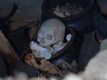 【奇葬】ヤドカリ葬の島『ニャーデバナ』、現地民が絶対に近づかない奄美大島の聖地を取材! 「肉を吸い取る音が聞こえてきた」