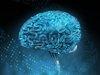 """【衝撃】「人間はコンピュータである」米有名大学が実証へ! 意識や感情も""""量子""""で解明、人間観が劇変か!"""