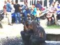 「2人きり」になった罰……インドネシアで恋人同士の男女が汚水を浴びせられる公開刑に! さらに百たたきも!?