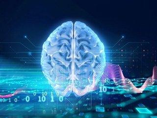 """殺された人間の""""最期の記憶""""を蘇らせる技術が登場へ! マウス実験で成功、カギは遺伝子活動(最新研究)"""