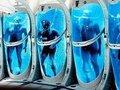 今、世界の富裕層が最も注目する3つの最新科学研究がスゴい! 人体冷凍保存、頭部移植、最強のペニス…!