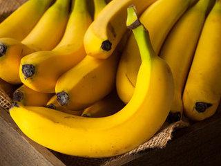 """バナナが絶滅した後の未来が悲惨過ぎる! 全フルーツが""""バナナ化""""する悲劇が起きる可能性も!"""
