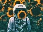 """【悲報】月にも花粉症が存在か! 宇宙飛行士が次々と""""涙目・くしゃみ""""…激ヤバ「月レゴリス花粉」か!?"""
