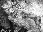 「ロサンゼルス地下に爬虫類人間が作った巨大都市と財宝がある」先住民ホピ族の驚くべき伝説とは?