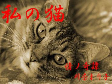 【実話怪談】「いやあぁっ!」毎晩丑三つ時に現れる猫の正体と生霊の執念! 本村さんの恐怖体験