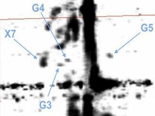 【ガチ】銀河系に謎の物体「Gオブジェクト」が発見される! 科学者困惑「ガスでも星でもない怪奇物体」宇宙人の居住地説も