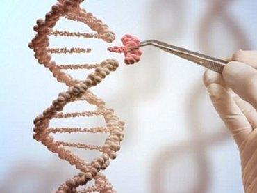 """【悲報】金持ちになれるかはDNAで決まっていたことが判明! カギとなる""""教育遺伝子""""をもつ人の特徴4つ!"""