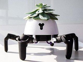 日光を求めて勝手に歩く「ロボット植木鉢」がハイテク可愛すぎる! 水がないと激おこ、満足すると踊りだす…!