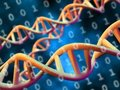 「DNAコンピュータ」開発計画をアメリカの諜報機関が発表!莫大な費用と電気消費量も…!