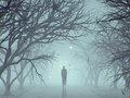 【未解決事件】霧の中に消えた人々! 藤代バイパス車両失踪、チリ空軍機の消失…!