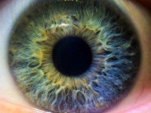 一目見るだけで「自閉症」か診断できる錯視動画がスゴイ! 脳のクセが瞳孔に発現、潜在的な自閉症の診断にも効果的!