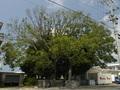 「命落とすよ」取材中に目から血を流した老婆が警告! 沖縄「ユタの祠跡」にまつわるヤバイ過去とは!?