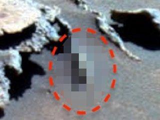 """【衝撃】火星で""""行き倒れたエイリアン""""の死体が発見される! 苦悶の最期に驚愕…NASA激写、研究家「20体以上ある」"""