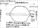 1986年の「日航ジャンボ機UFO遭遇事件」に新展開! パイロットの手記発見「2機のUFOに付きまとわれ…」