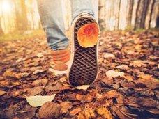 食べたいものを選んでわかる「秋の開運方法」が的中する