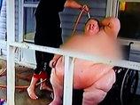 """【閲覧注意】310kg超肥満女のシャワー風景が壮絶すぎる! 食べることで恋人と絆を深める""""狂気の愛""""の終着点=米"""