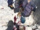 """【閲覧注意】31年前に雪山で遭難した女性の「氷漬けミイラ」が発見される! まるで""""蝋人形""""、回収される日を待ち続けて…"""